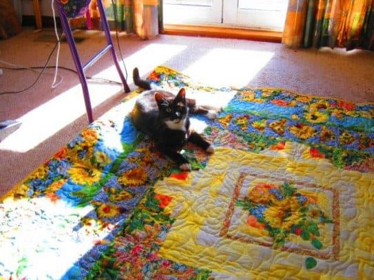 Wordless Wendesday Anniversary Quilt