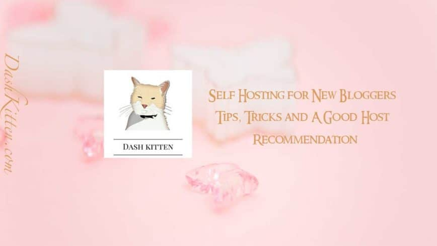 Self Hosting for New Bloggers