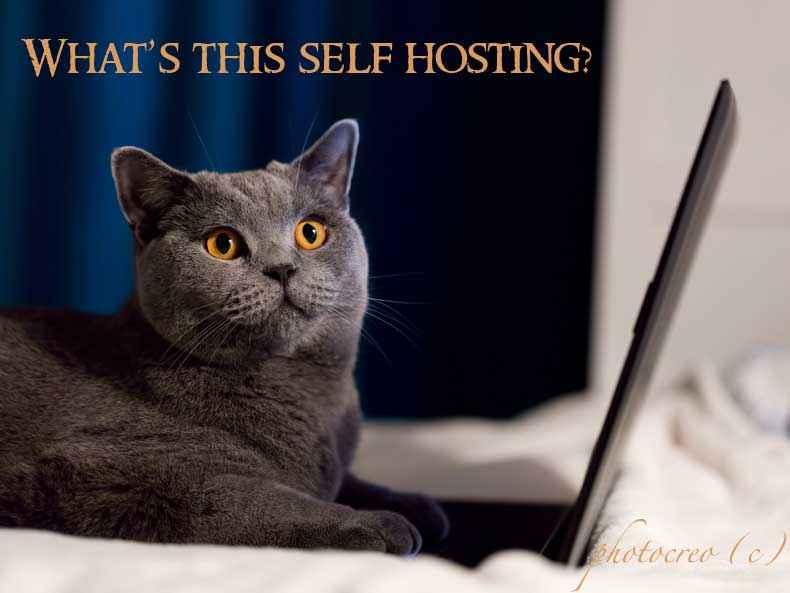 Self hosting Tips