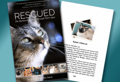 'Rescued' from Great Plains Rescue