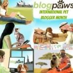 september blog paws badge