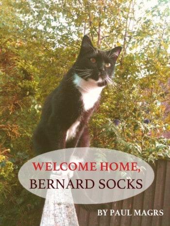 Welcome Bernard Socks Cover