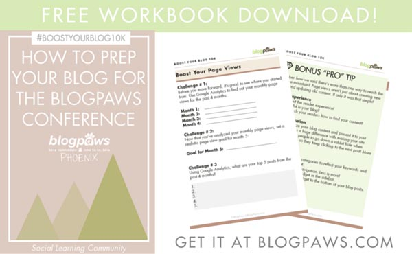 Google Analytics Webinar workbook