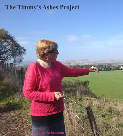 The Timmy's Ashes Project