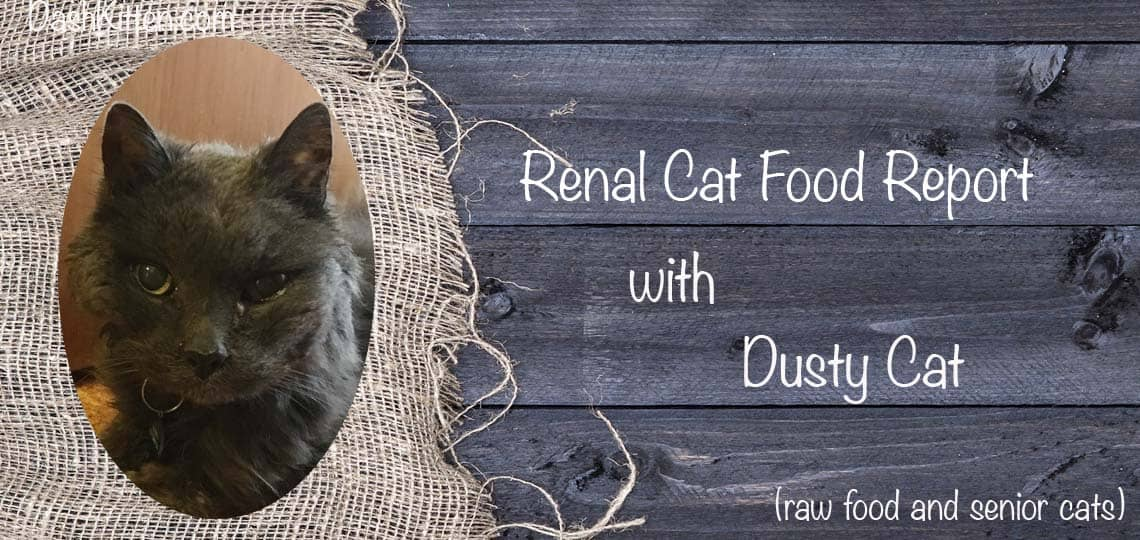 Renal Cat Food Report