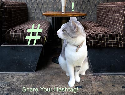 Hashtags on Fire