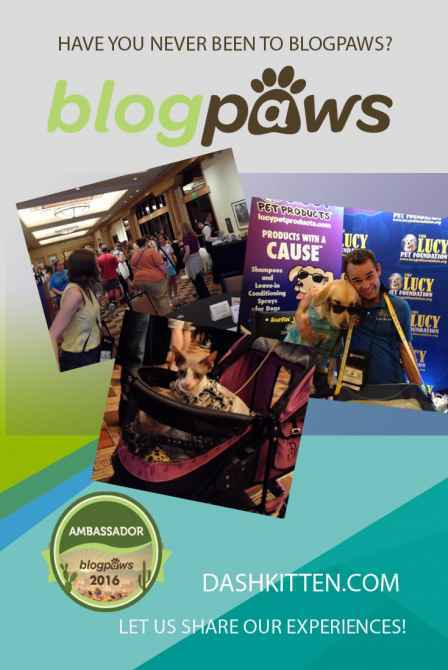BlogPaws Conference Image