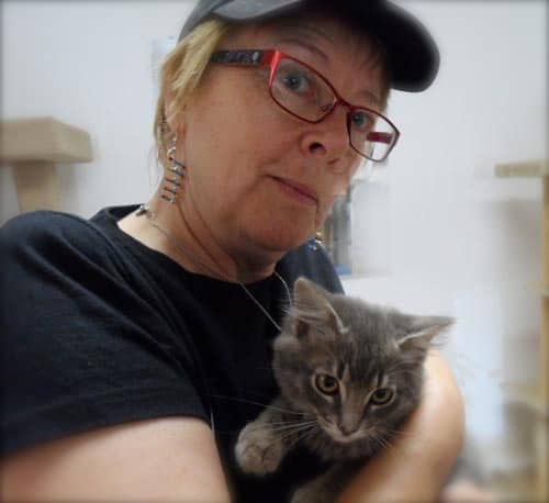 Lady holding a fluffy kitten