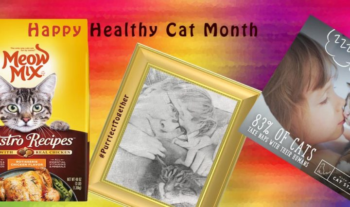 MeowMix Happy Healthy Cat Month