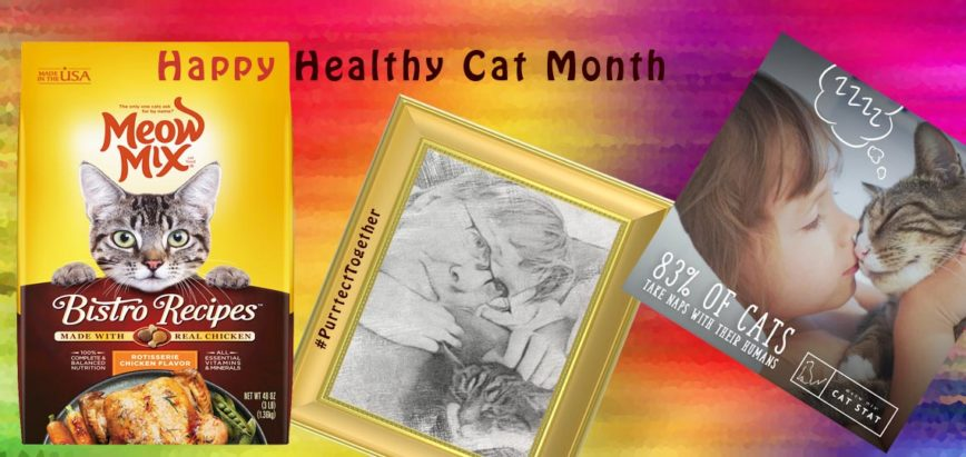 PurrfectTogether for Happy Healthy Cat Month