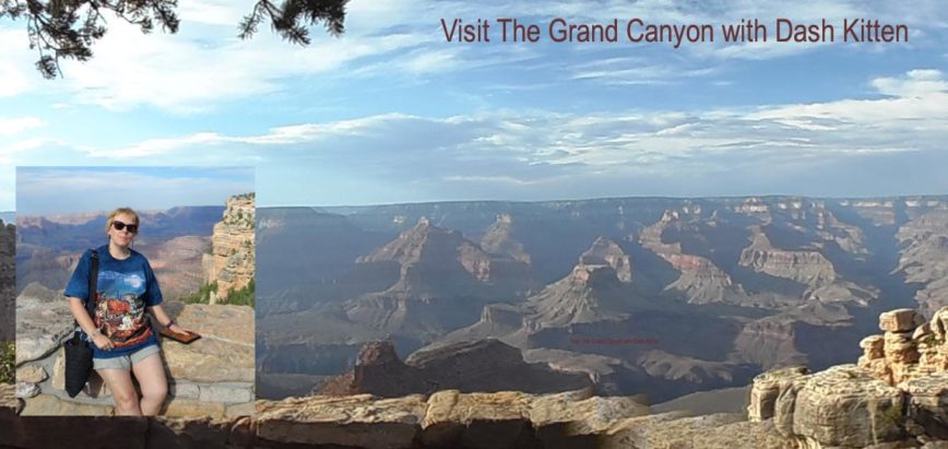 The Grand Canyon A Natural Wonder after BlogPaws
