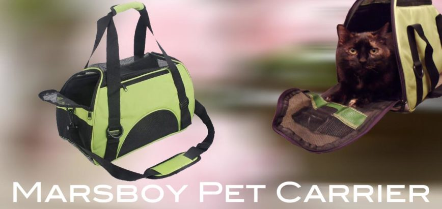 The Marsboy Pet Carrier Review