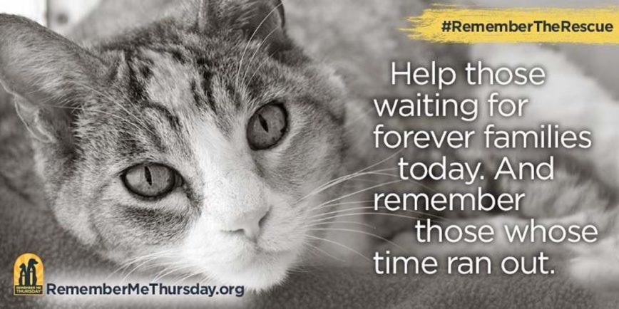 #RememberMeThursday A WorldWide Event