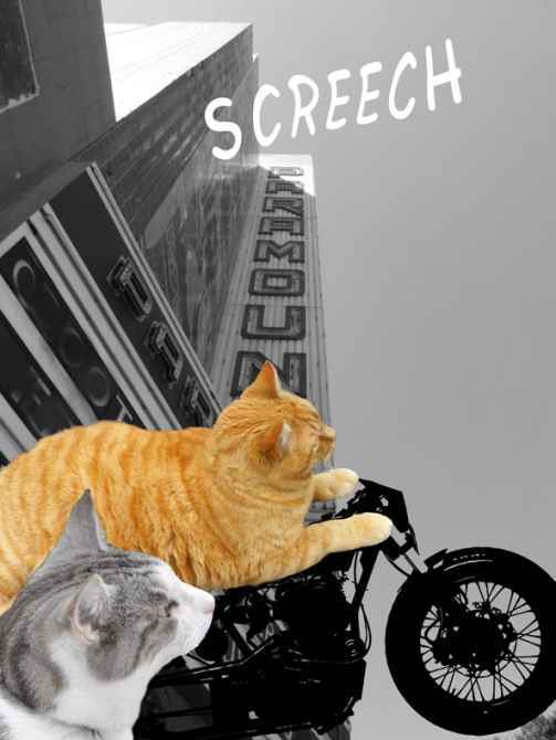 Two cats race through the streets
