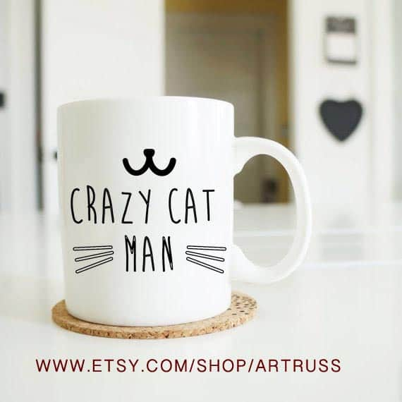 Budget Gift Guide for Pet Lovers Comic mug with a Crazy Cat Man quote