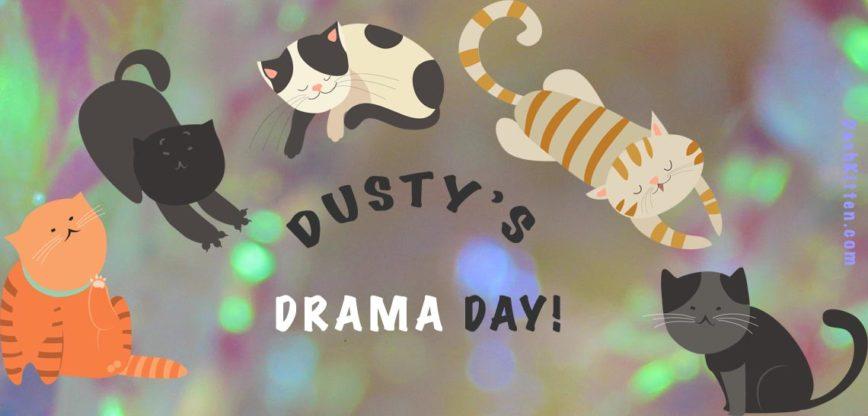 DUSTY'S DRAMA DAY