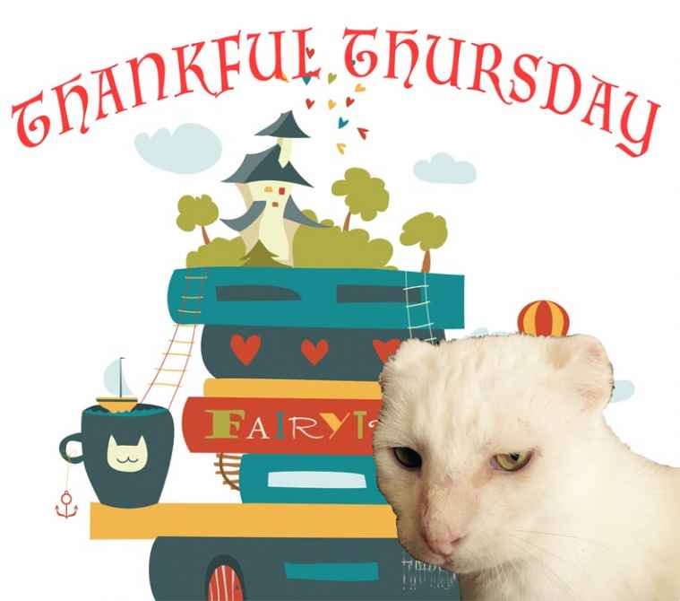 Thankful Thursday image with Harvey Cat
