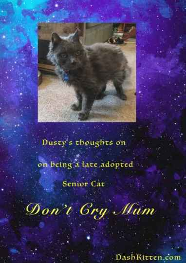 Dusty Don't Cry Mum Pin