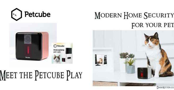 Petcube Smart Home Pet Camera