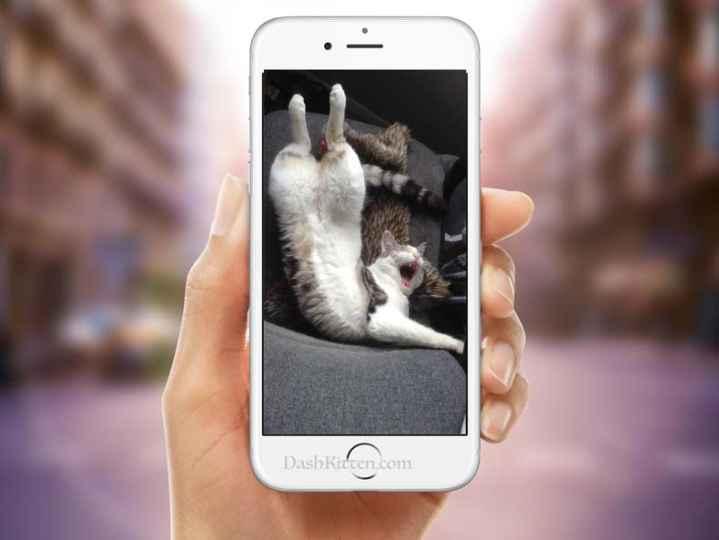 Beginner Smartphone Movie Tips