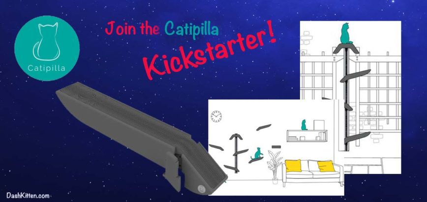 The Catipilla on Kickstarter UPDATE