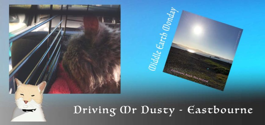 Visit Eastbourne With Driving Mr Dusty