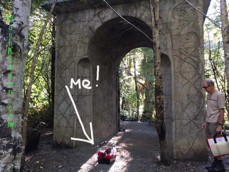 Dusty poses at the Arch in Rivendell