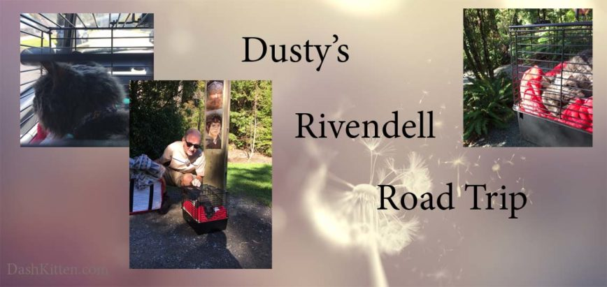 Driving Mr Dusty Visits Rivendell
