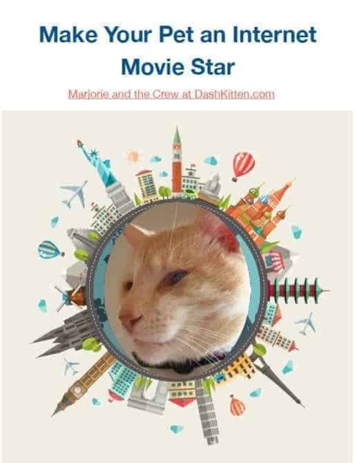 Movie Making eBook How to Make Your Pet an Internet Movie Star ebook