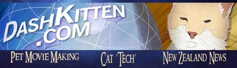 Cat Tech Header for Dash Kitten