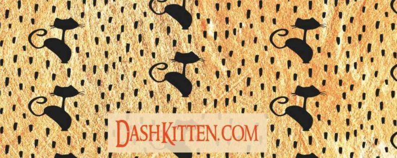 General Background for Dash Kitten