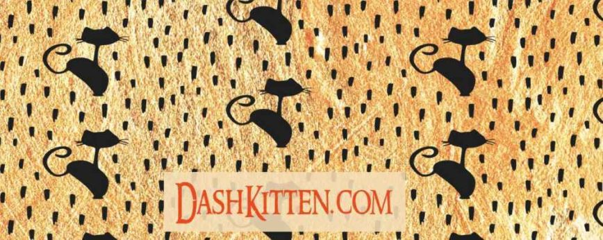 Video Challenge For Dash Kitten Readers