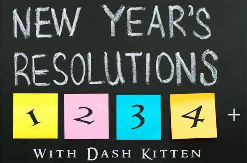 NEW YEAR 2018 Dash Kitten Graphic