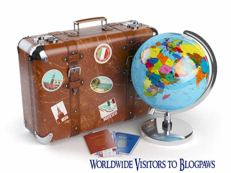Conference Travel Tips for International Visitors