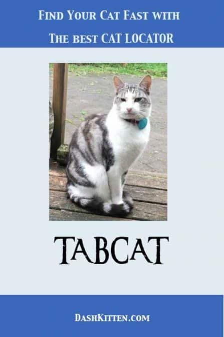 The Best Cat Locator TABCAT Helps Find A Missing Cat. EIndoor or outdoor cats can go missing. At those scary times you need a super efficient way to find your cat. Meet Tabcat.