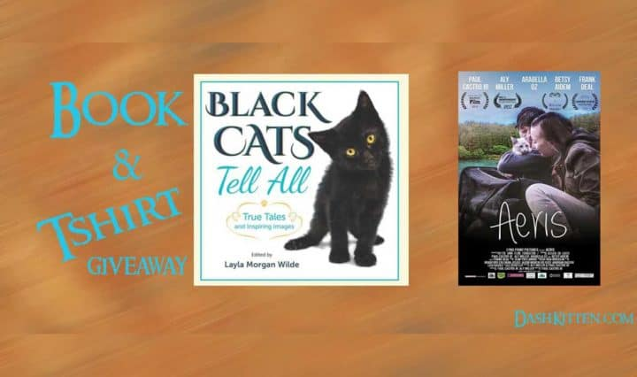 Giveaway on Dash Kitten blog