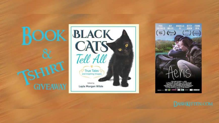 Exclusive Black Cats Tell All Double Prize Giveaway