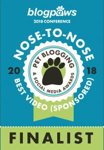 Best-Video-Sponsored-209x300