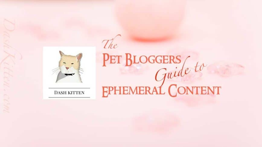 Smartphone Ephemeral Content What is it? Tips For Pet Bloggers