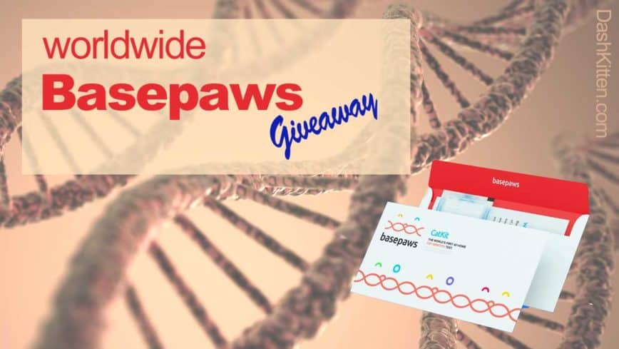 Basepaws Worldwide Giveaway (Closed)