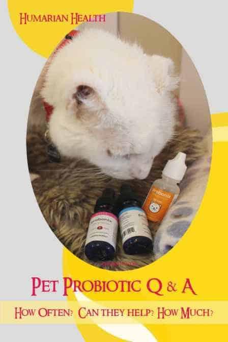 Probonix Probiotics Q&A