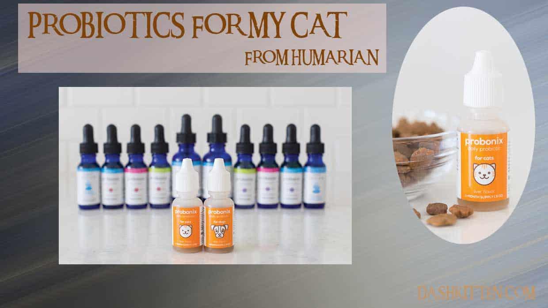 Probiotics for my Cat