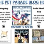 The NEW Pet Parade Banner Aug 2018