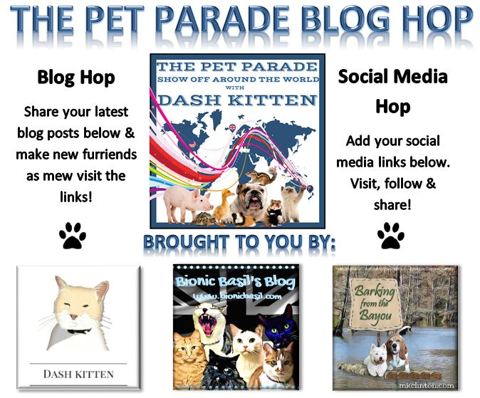 Pet Parade 265 Banner Aug 2018