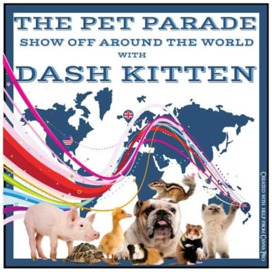 The Pet Parade New Banner 2018