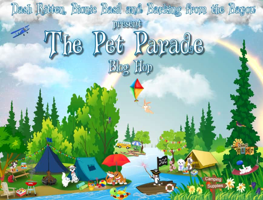 WOW It's the Pet Parade 261 Wordy or Wordless