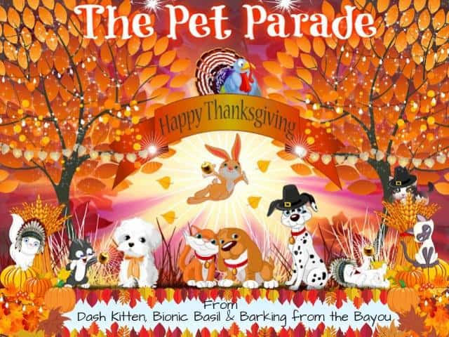 Pet Parade Thanksgiving