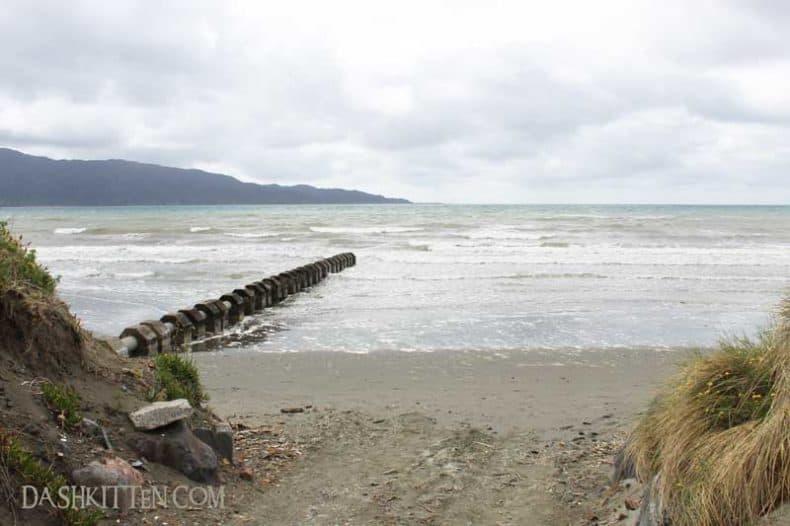Kapiti Coast and the sea