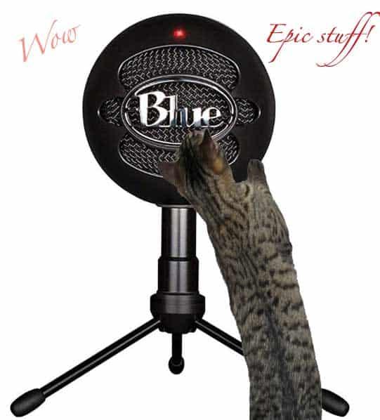 Smartphone Microphone fun