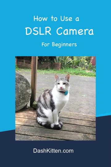 DSLR Camera for beginners